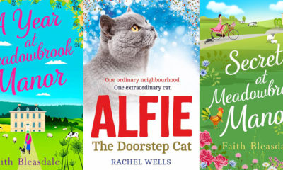 From Cat-lit to Chick-lit by Faith Bleasdale